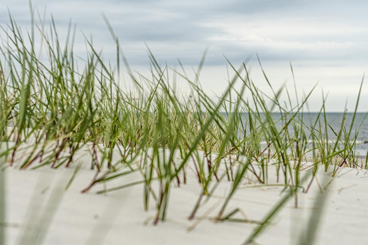 Wspaniałe wczasy nad polskim morzem – Bałtykiem